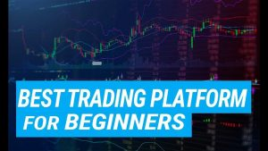 My Best Trading Platform for Beginners