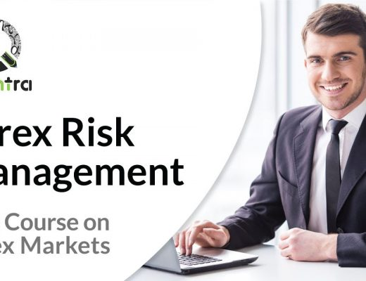 Forex Risk Management   Free course in Forex Trading   Momentum Trading Strategy