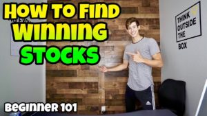 How To Find WINNING Stocks Everyday For Beginners | Step By Step