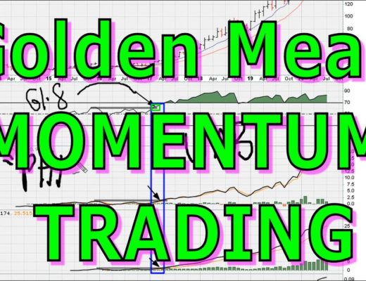 How To Use The Golden Mean In Long-Term MOMENTUM Trading – #1207