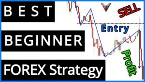 PERFECT Beginner FOREX Strategy