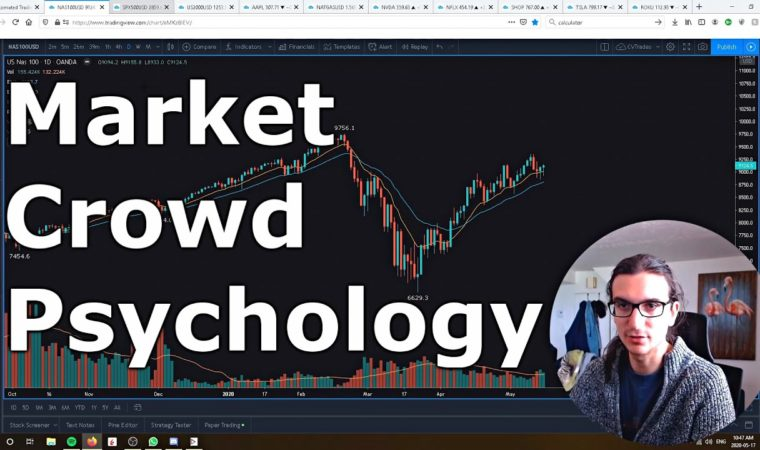 Stock Market Crowd Psychology (Examples of herd mentality and impulsive decisions)