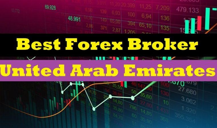 the best forex brokers in United Arab Emirates  | Forex Broker 2020