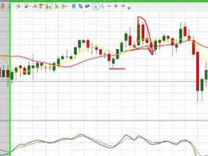 Day Trading School - Learn How to Win Day Trading - Forex Trading School