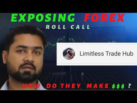 Exposing Forex: Limitless Trade Hub
