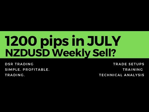 How To Trade Support & Resistance: FOREX 1200 pip month, Forex Position Trading Paints
