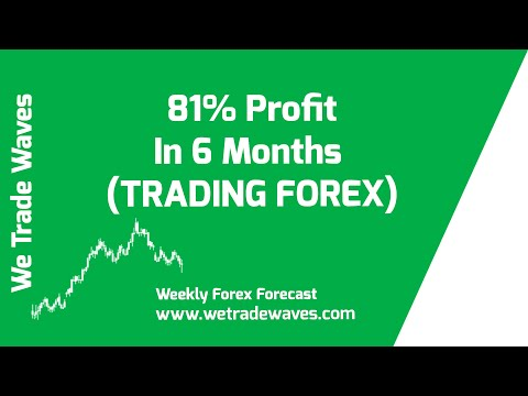 How We Made 81% Profit In 6 Months (TRADING FOREX)