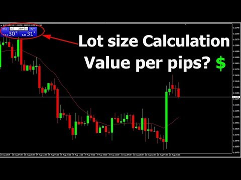 Lot Size and Value Per Pip Calculator - Position Size Calculator Forex Trading Philippines, Forex Trading Position Size Calculator