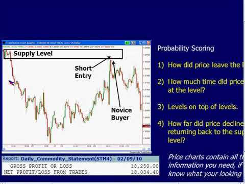 Sam Seiden  Forex Swing Trading With Supply and Demand Analysis