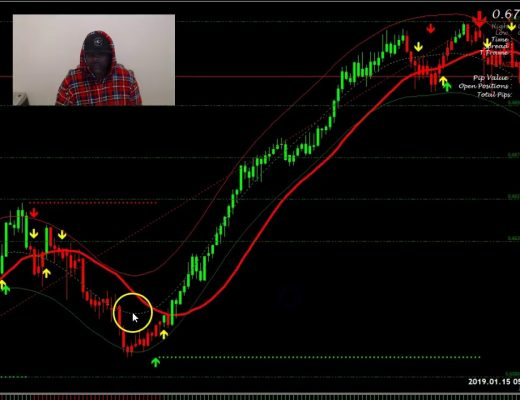 FOREX: LIVE TRADE OVER 100 PIPS IN 1 DAY