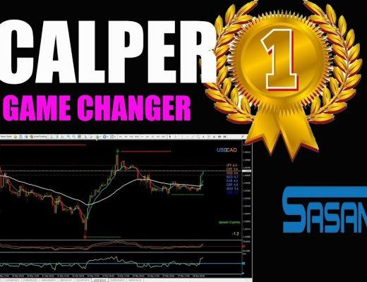 FOREX DAY TRADER SCALPER 1