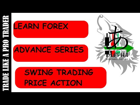 What is swing trader in forex