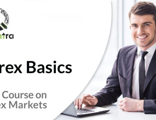Forex Trading for Beginners | Free course in Forex Trading | Momentum Trading Strategy