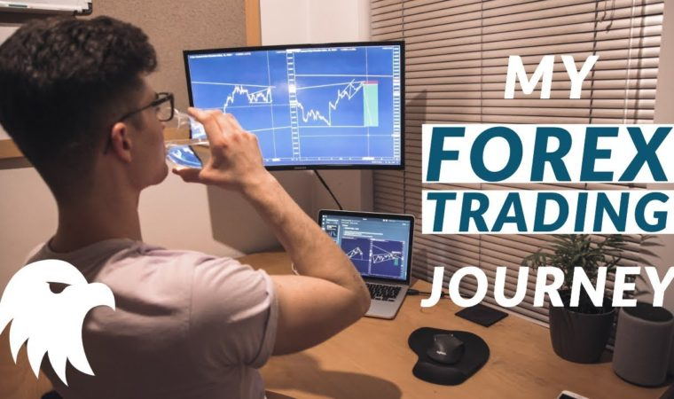 An Insight into my Forex Trading Journey   February Trade Recap