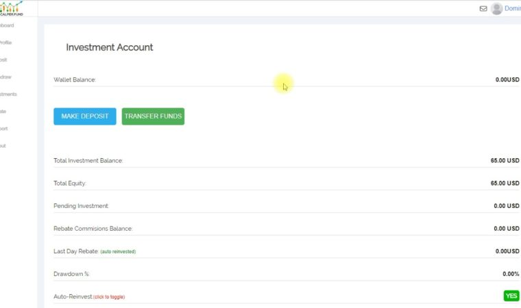 Fxscalper 2.0 Update – Fxscalper 2 0 – Fxscalper – The Greatest Forex Passive Auto Trader Account