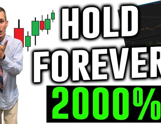 Top 3 Penny Stocks to Buy and Hold FOREVER | 2000% +